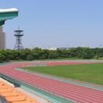 都立大井ふ頭中央海浜公園スポーツの森